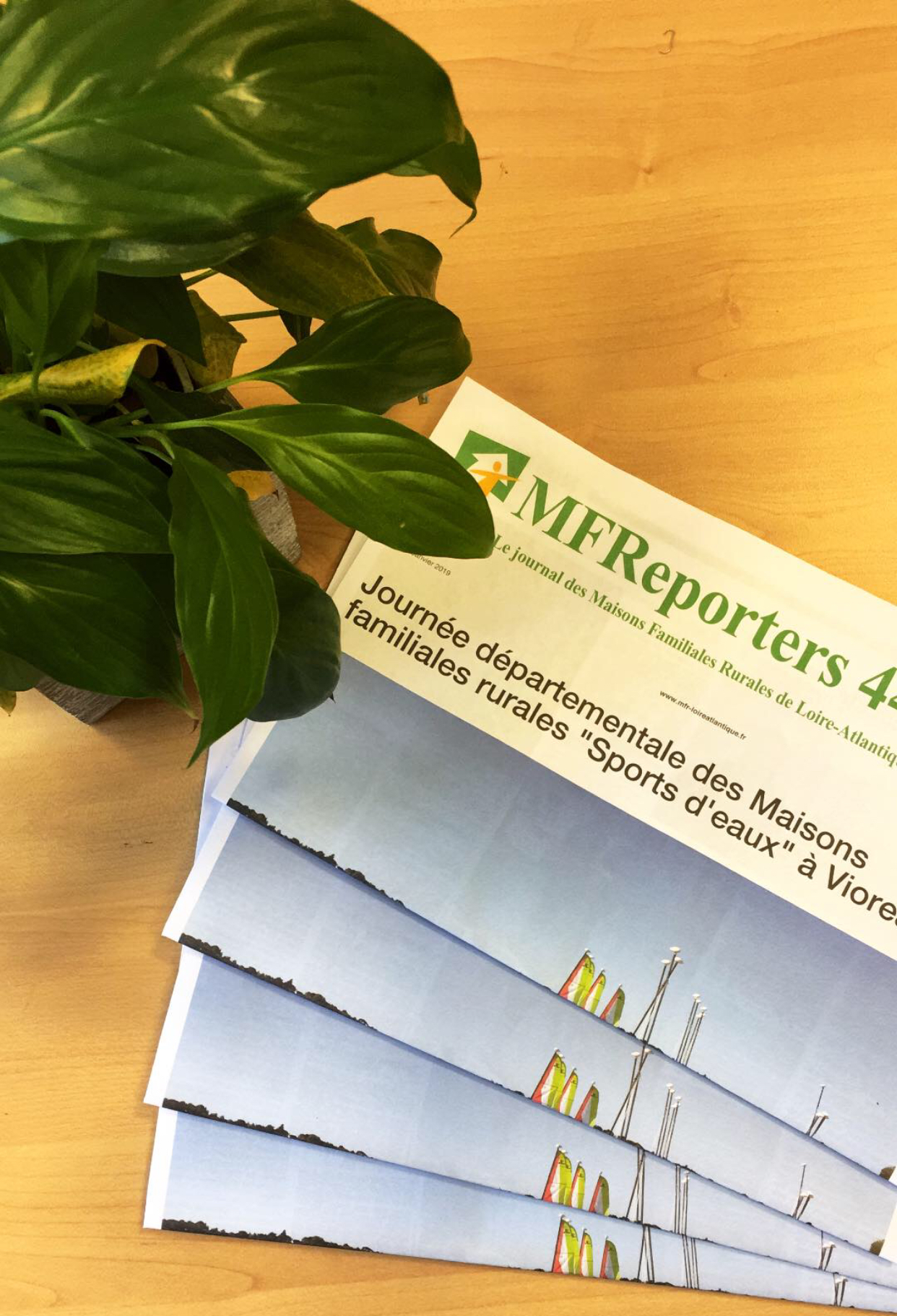 MFReporters44